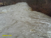 flood 3-08-09 001.jpg