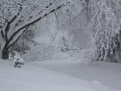 Feb. 26th, 2013 snow 077.JPG