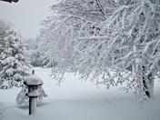 Snow storm in Blue Springs Missouri