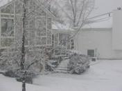 snow storm March 2009 004.JPG