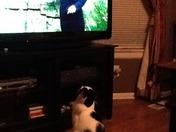 Mason watching Lisa's weather