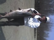 My brother and his fish