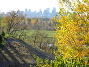 Fall 2010 City