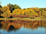 Fall colors at James A Reed Wildlife