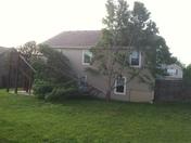 Raymore neighbor tree blown over