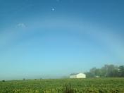 rainbow of fog