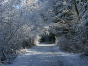 The Houston Trail in winter