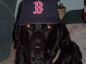 Utah Red Sox Fan