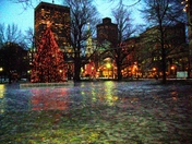The  Boston common in winter