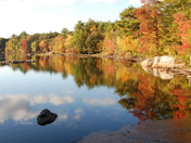 Fall Foliage at Breakheart Reservation - Saugus
