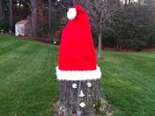 Santa Tree Stump