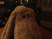 Best Stuffed Animal Ever