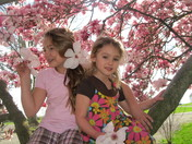 Magnolia tree and Grand daughters, Kaleigh and Sarah Jane