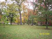 Fall Colors at Miami University east of Oak Street.JPG