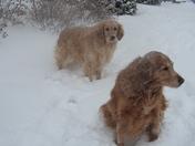 enjoying the snow day