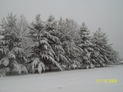 snow 2009.jpg