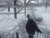 Tree limb on my van