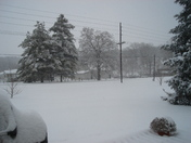 snow on our property
