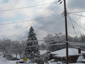 Ice covered Powerlines
