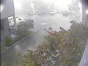 Dial One Security employee runs to truck in storm and narrowly escapes tree fall