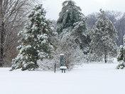 Winter Strom 01-28-09 043.JPG