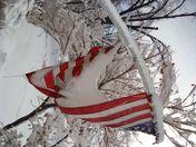 DSC00336flag.jpg
