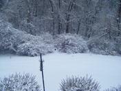 snow09 002.jpg