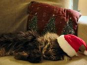 This Santa Stuff Is Hard Work