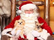 croped b&s santa 2010.JPG