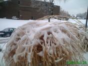 Winter Storm-Jan,,2009