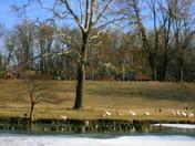 Winter at Denver Park in Wilmington