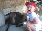 Noah and the friendly goat!