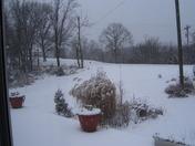 snow 01-07-10 001.JPG