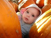 Mom's Li'l Pumpkin