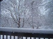 Winter Storm Feb 2010 009.JPG