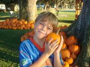 DAvids Pumpkin