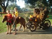 Pony Carriage Team
