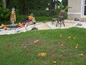 Fall in Palm Bay Fl
