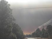 Palm Bay brush fires