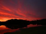 Winter Springs Sunset :)