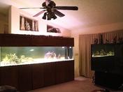 10 foot x 3foot x 30 inches Glass Fishtank