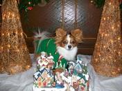 Cooper's Christmas