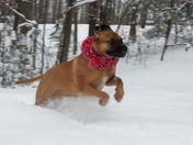Lovin' the Snow!!!