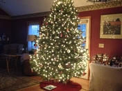 bulmers Christmas tree