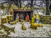 Christmas Lights Nativity Scene – JFK Park