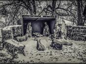Nativity Scene – Like Black and White