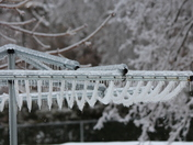 ice coated clothes lines