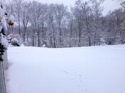 Snow in Bradford, MA