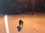 "still snowing @10 4"" on ground"