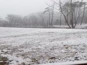 heavy beautiful snow